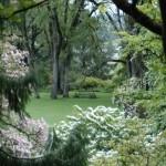 North Lawn from Magnolia Walk