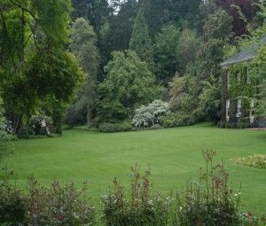 North Lawn from Cliff Cottage Walk